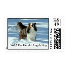 Herald Sheltie Postage Stamp