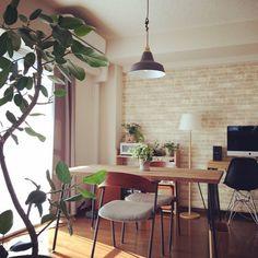 bordermanさんの、Overview,観葉植物,照明,ダイニングテーブル,カフェ風,二人暮らし,パソコンデスク,ペンダントライト,賃貸,ダイニングチェアについての部屋写真