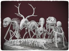 3D-printed skeletons for your mythology museum Painstakingly designed, these 3D-printed skeletons take their inspiration straight from the pages of a mythological bestiary.