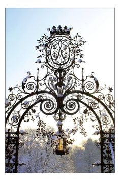 Evey-Eyes, Gate in Mariemont Park, Belgium #winter #christmas #snow #gate