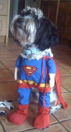 barrington clone ;-) superman!