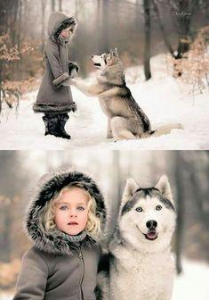 Alaskan Husky, Alaskan Malamute, Animals And Pets, Funny Animals, Cute Animals, Dogs And Kids, I Love Dogs, Beautiful Dogs, Animals Beautiful