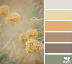 Design seeds color palettes posted daily for all who love color. Palette Design, Nature Color Palette, Colour Pallete, Color Palettes, Colors Of Nature, Color Combinations, Summer Colour Palette, Combination Colors, Design Seeds