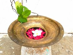 Antique brass Handwash basin improvised vase . . . . Now on Sale Kindly DM for price and details Shipping all over India . . . For similar collectibles visit our fb shop *link in bio . . . #indiantiquest #antiqueshop #collectibles #brass #copper #bronze #vintage #antique #classic #historic #wooddecor #indian #interiordecor #homedecor #antiquedecor #artdeco #curio #cultural #handicrafts #nostalgia #kitchenvessels #traditional #retro #ethnic #nostalgia #kitchenprops #interiordesign #primitive…