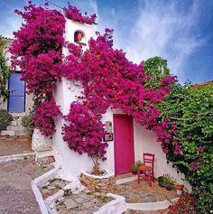 fachadas-cor-de-rosa-pink-house6