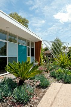 window envy Amazing Mid-Century Modern Addition in Balwyn North | Grass-trees & Butterfly Chairs