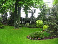 Małe ogrody przydomowe - Gardenarium