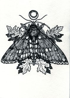 female emperor moth tattoo - Google Search