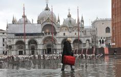 Venice: Tourists to be Fined £382 for Wheelie Suitcases After Locals Complain of Noise Pollution