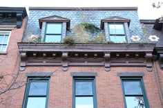 Eco-Brooklyn townhouse Slow Movement Building Design