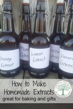Make your own extracts for delicious baking and gift giving! The Homesteading Hippy *homesteadhippy * Learn more by visiting the image link. Homemade Spices, Homemade Seasonings, How To Make Homemade, Homemade Breads, Homemade Dry Mixes, Do It Yourself Food, Masterchef, Milk Shakes, Preserving Food