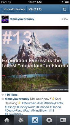 Disney fact.  No kidding?