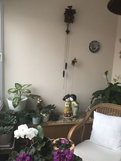 Kış bahçesi / Winter balcony