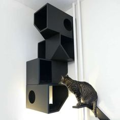 Cat Mansion - This cat mansion is the perfect place for your feline to feel as regal as it actually thinks it is. Crazy Cat Lady, Crazy Cats, Cat Mansion, Cat Apartment, Son Chat, Cat Climbing, Cat Room, Pet Furniture, Cat Wall