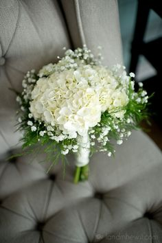 Baby's breath and hydrangea. bouquet!