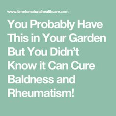 You Probably Have This in Your Garden But You Didn't Know it Can Cure Baldness and Rheumatism!