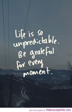 Life Is So Unpredictable - The Daily Quotes
