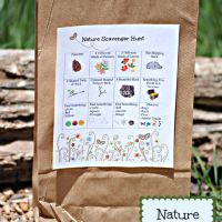 Nature Scavenger Hunt Ages 3-5 SC.1.43 Investigate the physical surroundings by digging in dirt, collecting and classifying rocks, recognizing changes in weather. SC.1.45 Look at things within the environment, SC.1.75 Use their five senses to learn about the environment.
