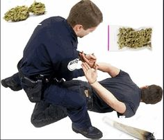 The+Downside+of+Marijuana:+Getting+Busted