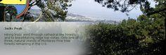 Jacks Peak County Park, a hidden gem here in the Monterey Peninsula!