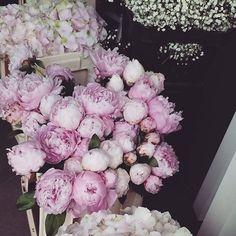 #progettidinozze #peonierosa #allestimentidasogno #matrimonioitalia #amalfiwedding #weddingplanner #weddingdesigner www.gennymonaco.it