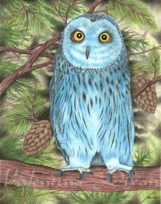 Blue Owl Perch artwork drawing $99 - $149 size preference click website Drawing Artwork, Illustration, Drawings, Abstract Artwork, Artwork, Abstract