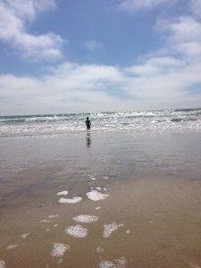 47 Best Pismo Beach Oceanobeach Grover Beach Images In