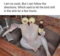 Turkey Chilling In The Sink