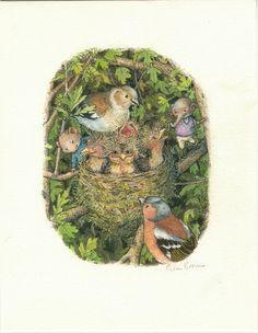 Petra Brown children's book illustrator
