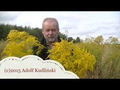 Naturalne leki - YouTube Home Remedies, Survival, Mens Sunglasses, Health, Youtube, Style, Krakow, Castles, Poland