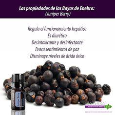 Aceites Esenciales México: Google+ Подробнее про эфирные масла #дотерра тут ➡➡ http://100111619.nweshop.ru/catalogue/doterra