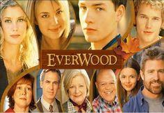 everwood tragic flaw essay
