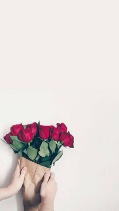 ☆Hava a nice Day ❤🌹 Iphone Background Images, Flower Background Wallpaper, Flower Phone Wallpaper, Pastel Background, Wallpaper Iphone Cute, Flower Backgrounds, Colorful Wallpaper, Flower Wallpaper, Mobile Wallpaper