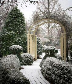 Winter Trellis http://www.pinterest.com/pin/188447565631663445/ Pinterest - Garden Inspiration