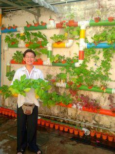 Joe Ng Kim Chew with his vertical vegetables garden at Calanthe Artisan Loft