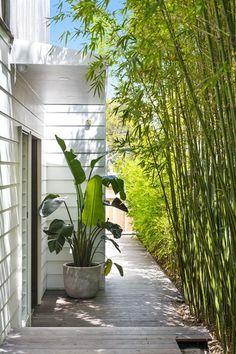 pool im garten ideen 18 Coonanga Road, Avalon Beach NSW Image 12 Tropical Backyard Landscaping, Home Landscaping, Tropical Garden, Backyard Patio, Gravel Patio, Diy Patio, House Landscape, Landscape Design, Garden Design