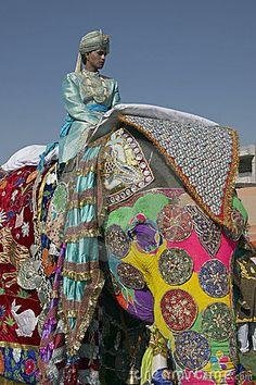 Festival del elefante, Jaipur
