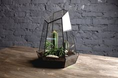 geometric glass terrarium crystal  handmade glass by boxwoodtree