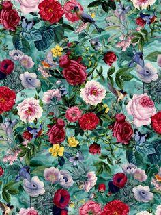 06885e2a9be8d 13 Best Cvetna kora images
