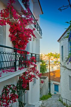 Streets of Skiathos Island, Greece Mykonos Greece, Crete Greece, Athens Greece, The Places Youll Go, Places To Go, Skiathos Island, Greece Art, Greek Isles, Holiday Places