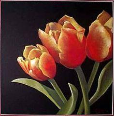 tulipes - OneDrive