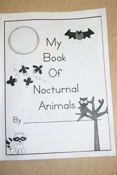 Mrs. Bagby's Kindergarten: Nocturnal Animals