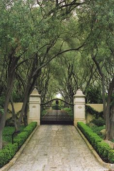 Mediterranean Style - Fairfield County, CT mediterranean landscape - love this entrance gate and the stone lined driveway Landscape Design, Garden Design, Contemporary Landscape, Landscape Architecture, Driveway Gate, Driveway Landscaping, Driveway Ideas, Modern Driveway, Fence Ideas