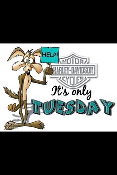 Only TUESDAY :(