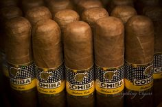 Cohiba Fan :) Cohiba Siglo VI Cohiba Cigars, Cigar Bar, Cuban Cigars, The Smoke, Pipes, Smoking, Lovers, Fan, Goals