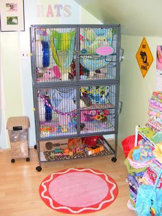The Rat Corner | Chelsey | Flickr Rat Cage Diy, Pet Rat Cages, Chinchilla Cage, Ferret Cage, Animal Room, Pet Rats, Pets, Chinchillas, Hamsters