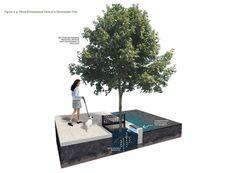 Green Streets Design Manual   Philadelphia Water Department