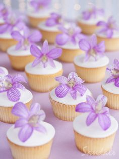 Look at these gorgeous cupcakes!!! Perfect for any destination wedding that we can help you plan. destination-wedding-experts.com