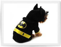 Batman Dog Costume!! If I had a dog I would buy it..