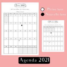 Agenda francophone 2021 pour planner & agenda rechargeable A5, agenda complet 2021 design, gestion du budget, organisation et citations inspirantes